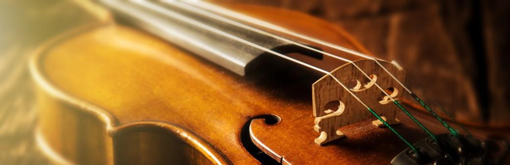 Bild Violine